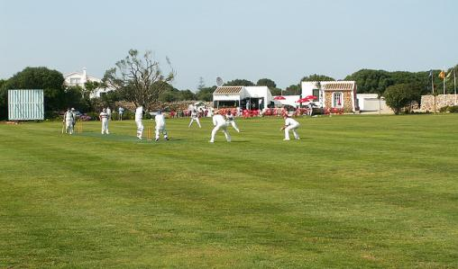 The popularity of cricket is growing in the Netherlands.