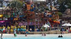 Edwin Doran Dubai Excursion - Wild Wadi Waterpark